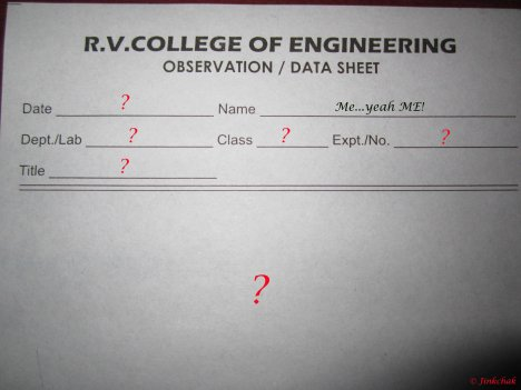 Data Sheet 1 - Copy copy