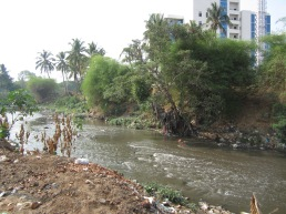 vrishabhavati river